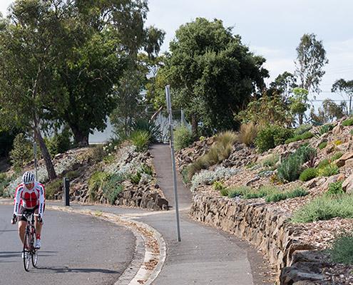 Yarra Boulevard dry stone wall rebuilding
