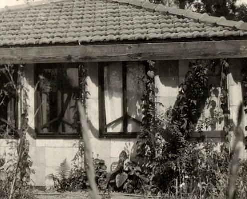 Pholiota, Eaglemont
